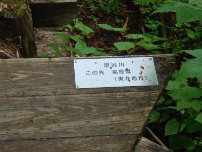 120702尾瀬 (49).jpg