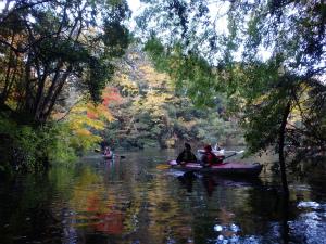 141130亀山湖H (17).jpg