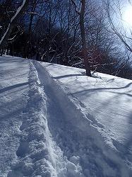 150221雪遊びM東 (29).jpg