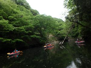 150509亀山湖H (85).jpg