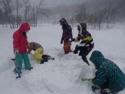 160301雪遊びスノーシューm (81).jpg
