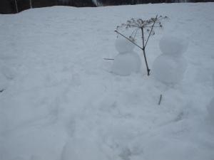 160313雪遊びスノーシューg (26).jpg