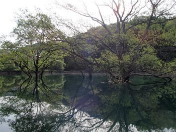 160506早朝カヌーbf (43).jpg