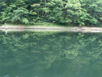 160815早朝カヌーrd (20).jpg