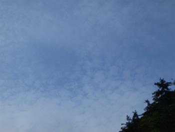 160912半日カヌー3sd (31).jpg