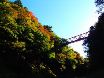 161024半日カヌー3ra (30).jpg