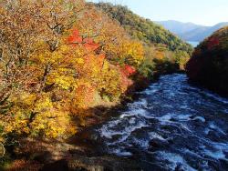 2012.10.16中禅寺湖視察 (226).jpg