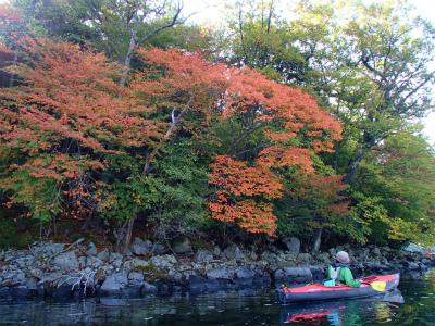 2012.10.16中禅寺湖視察 (55).jpg