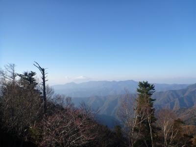 Mt (161).jpg