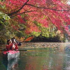 11月7日 四万湖カヌーツアー HIDEのイメージ