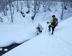 雪遊び満喫スノーシューツアー 視察のイメージ