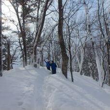 1月29日 スノーシューツアー HIDEのイメージ