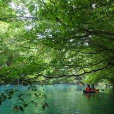 8月7日 四万湖カヌーツアー RYUのイメージ