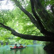 8月15日 四万湖カヌーツアー RYUのイメージ