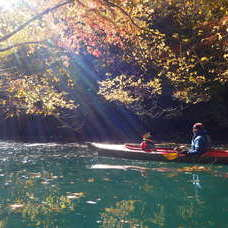 11月15日 四万湖カヌーツアー RYUのイメージ