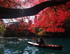 11月14日 四万湖カヌーツアー けんたろうのイメージ