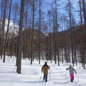 2月8日 スノーシューツアー RYUのイメージ