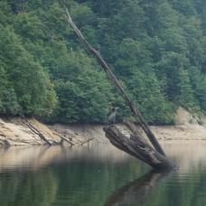 9月13日 みなかみカヌーツアー のりPのイメージ