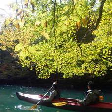 10月27日 四万湖カヌーツアー RYUのイメージ