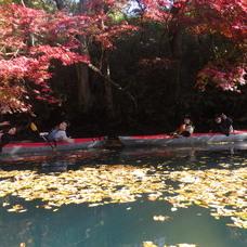11月8日 四万湖カヌーツアー ヒロのイメージ